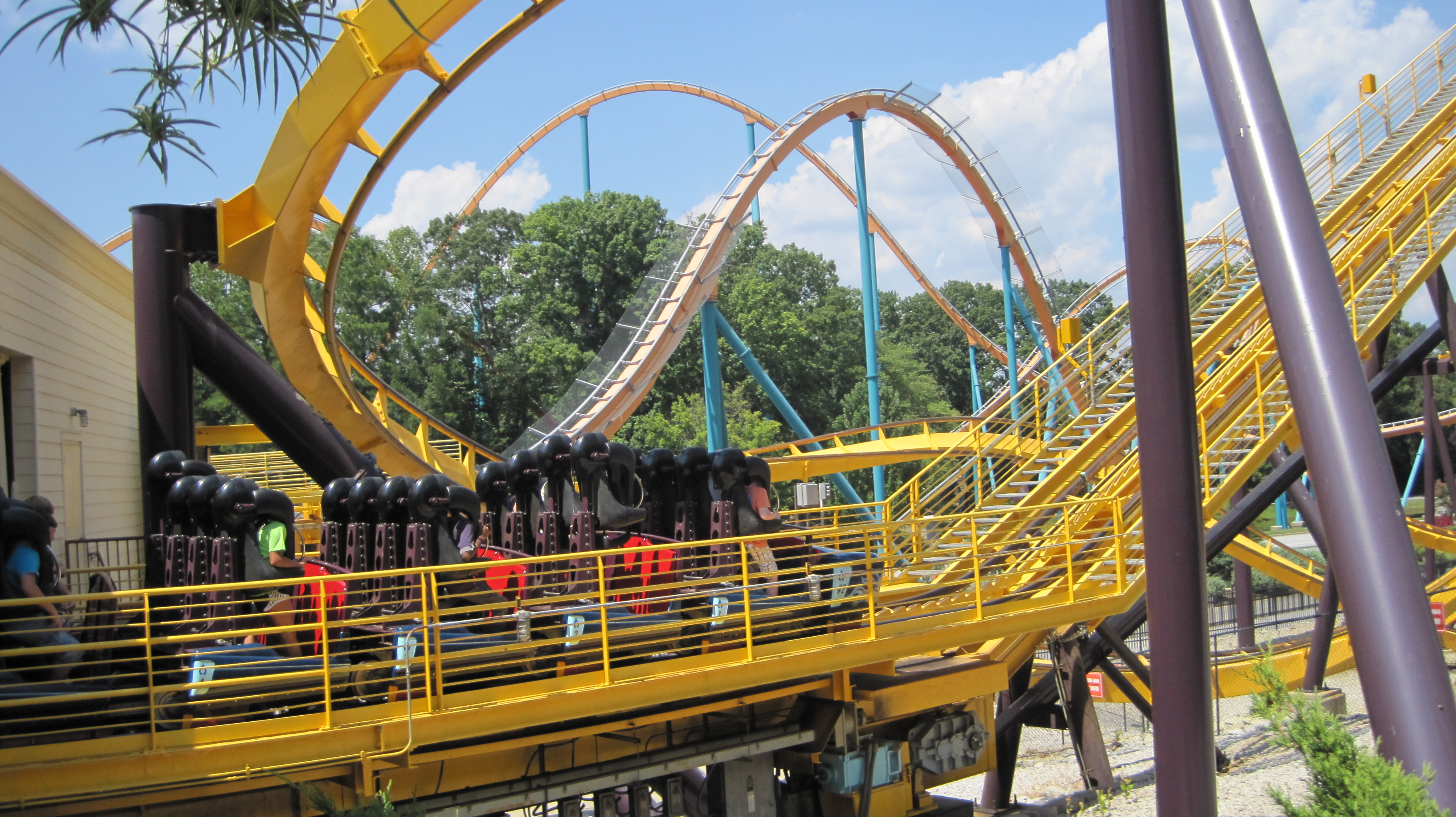 roller coaster by juliamaud