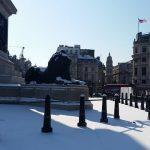 frozen trafalgar square - photo by Juliamaud